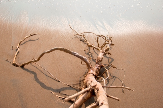 Waves and the Root 3