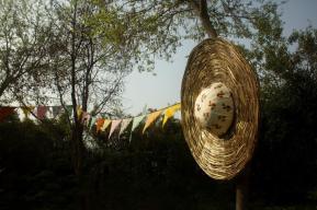 osho-festivalart-by-daras-19